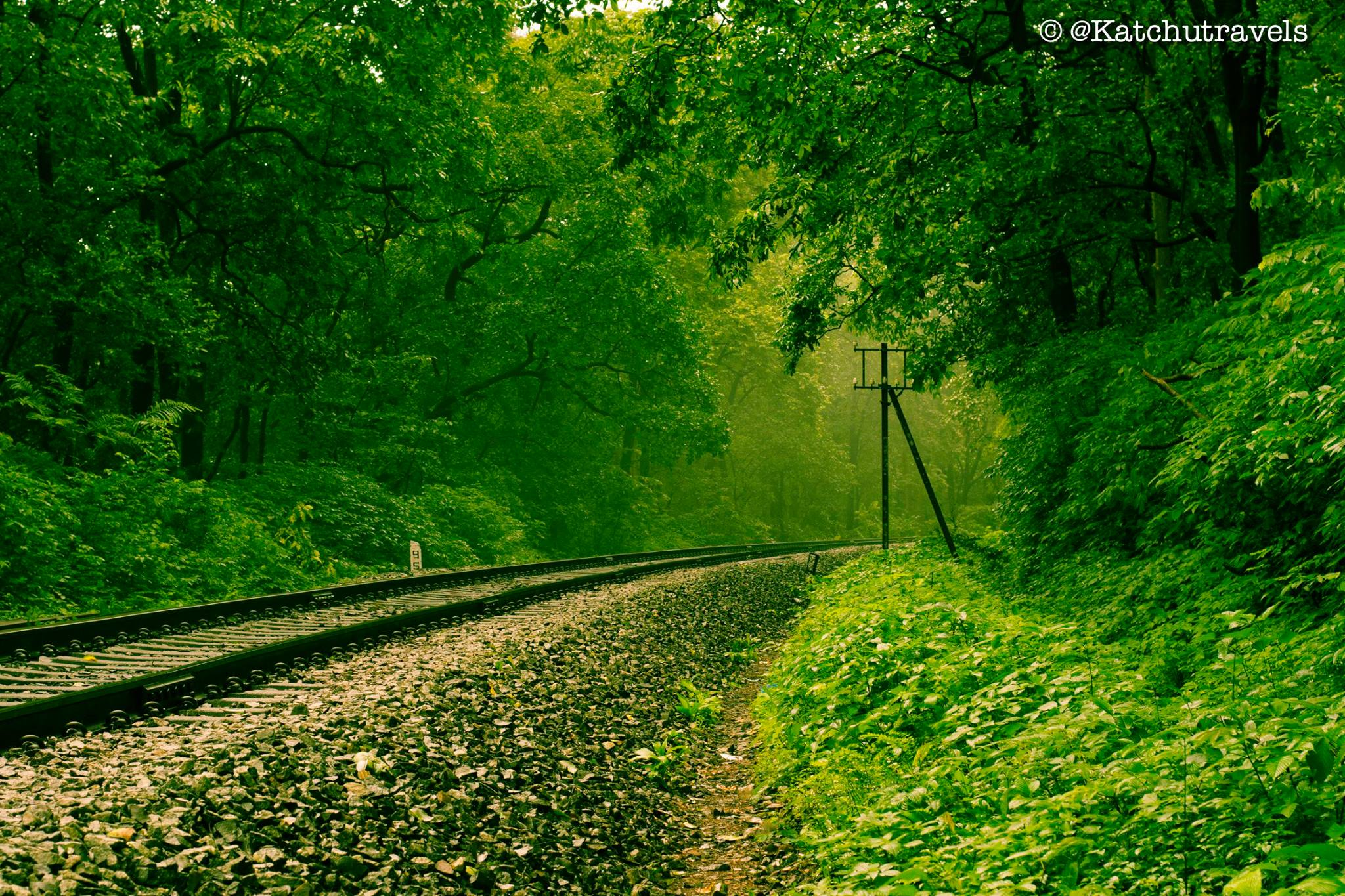 Railways crossing through verdant scenery in Goa(Kulem)