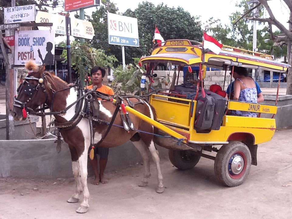 Cidomo- The only mode of horseback travel on the Gili Island