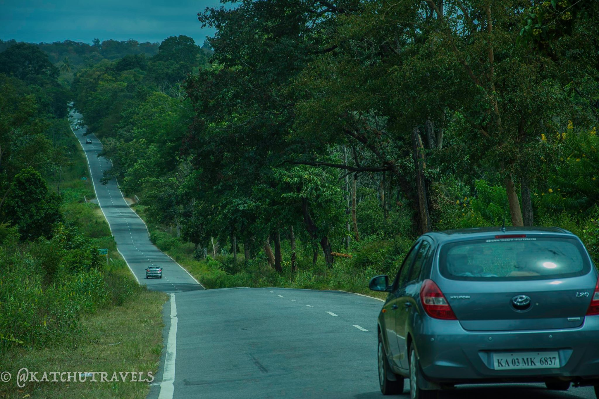 The Long Sloping Road to Coorg