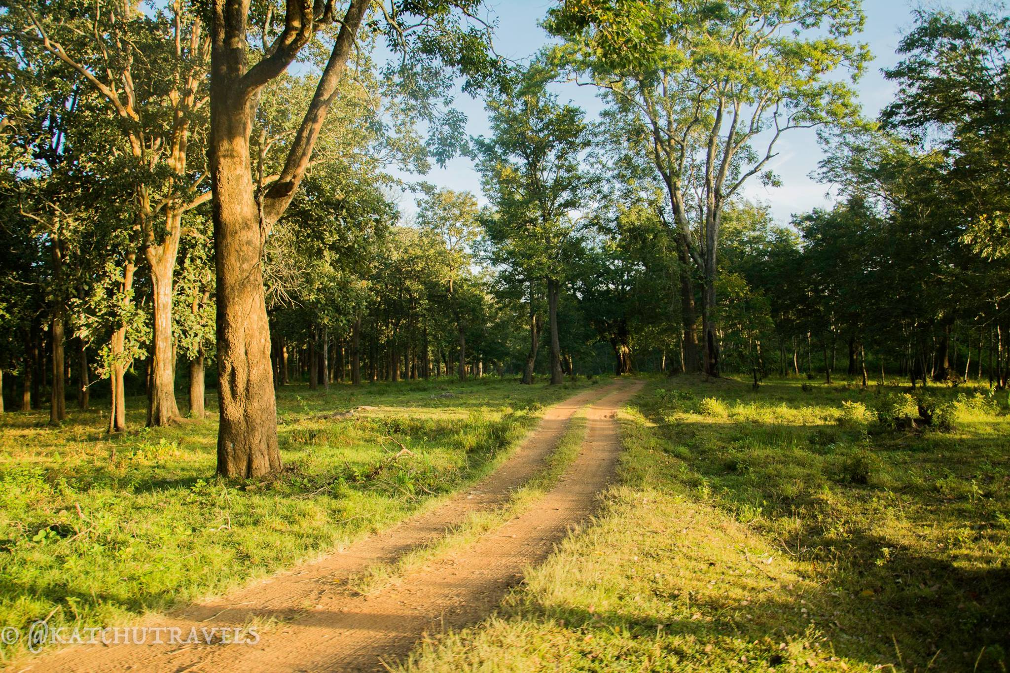 On the Nagarhole Safari Trail