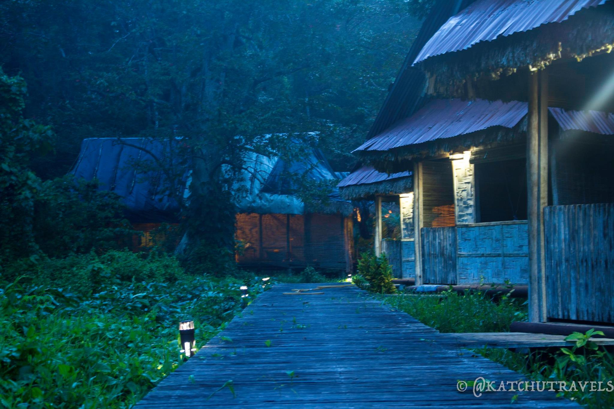 Dawn View of our pathway at Flying Elephants Resort in Kalapathar Village (Havelock Island-Andaman Islands(India)