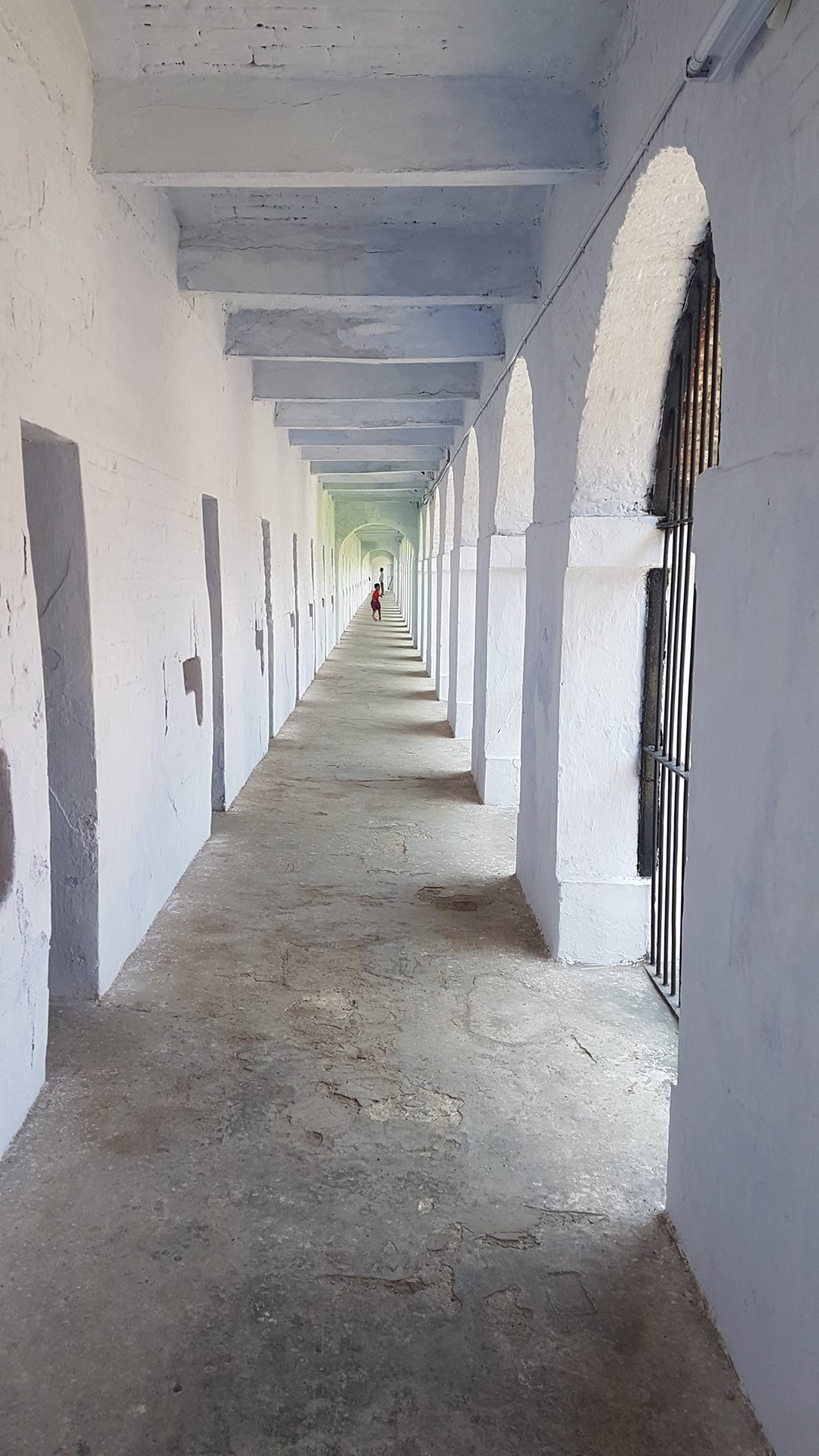 Nandu running around the Cellular Jail