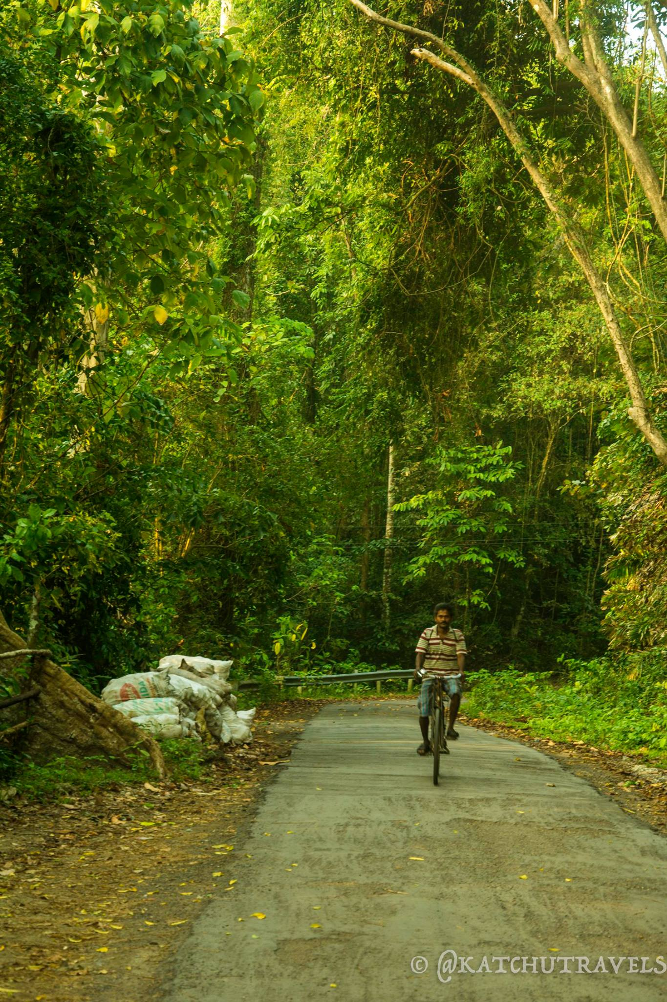 A cyclist ambling down the road inside Kalapathar Village