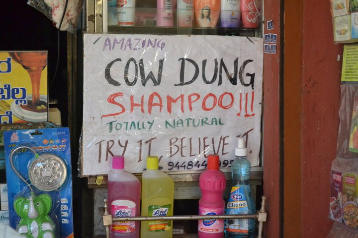 Cow-Dung Shampoo in Gokarna(Karnataka-India)