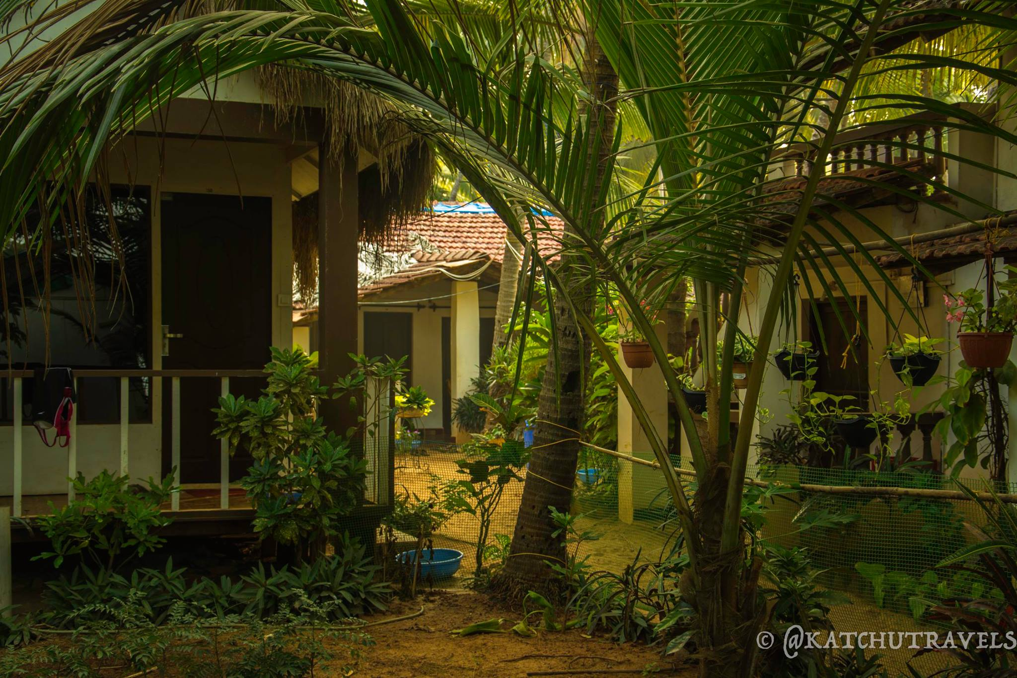 Greenzone at Manveer's in Agonda (Goa-India)