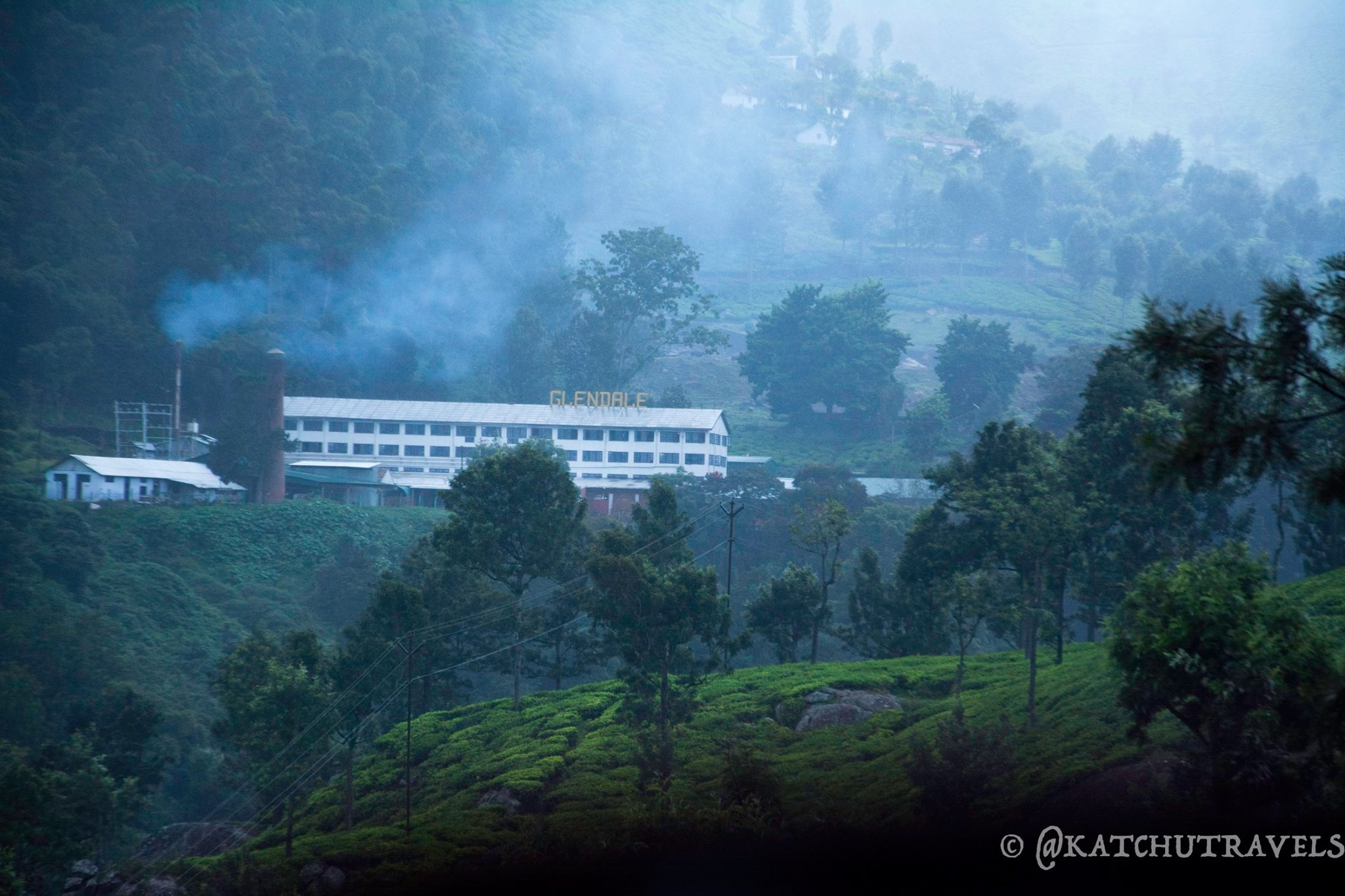 The Glendale Tea Estate when viewed from a distance enroute Coonoor