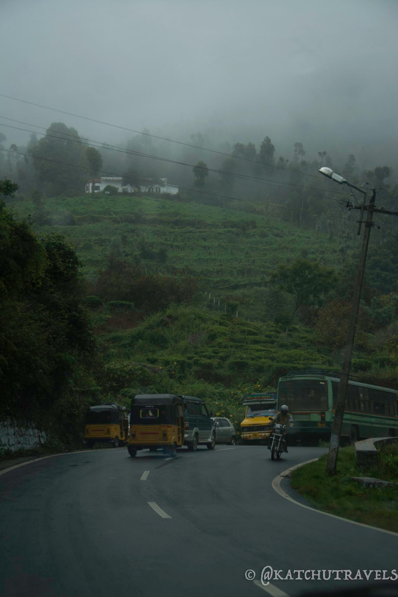 Misty Morning in Coonoor