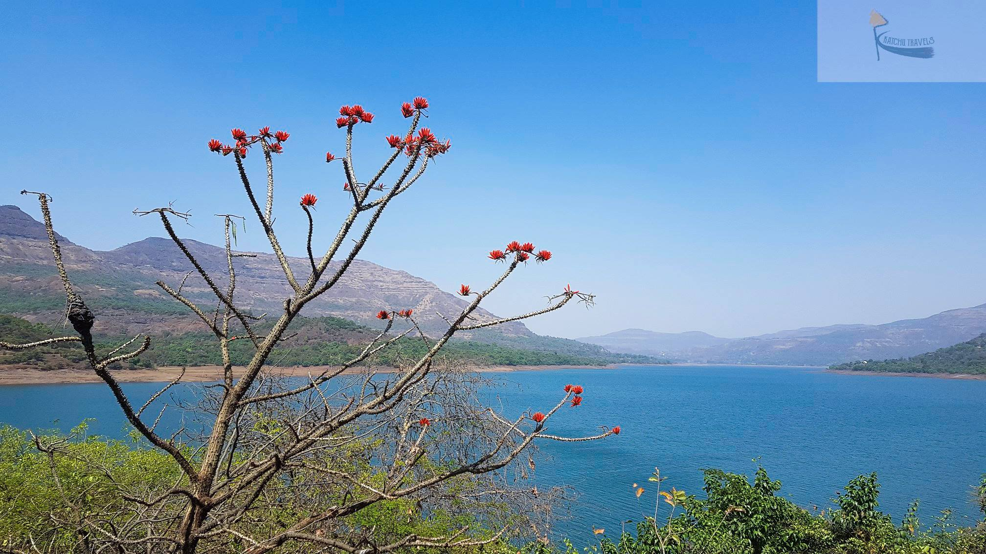 The Mulshi Lake near Tamhini Ghat-Maharashtra
