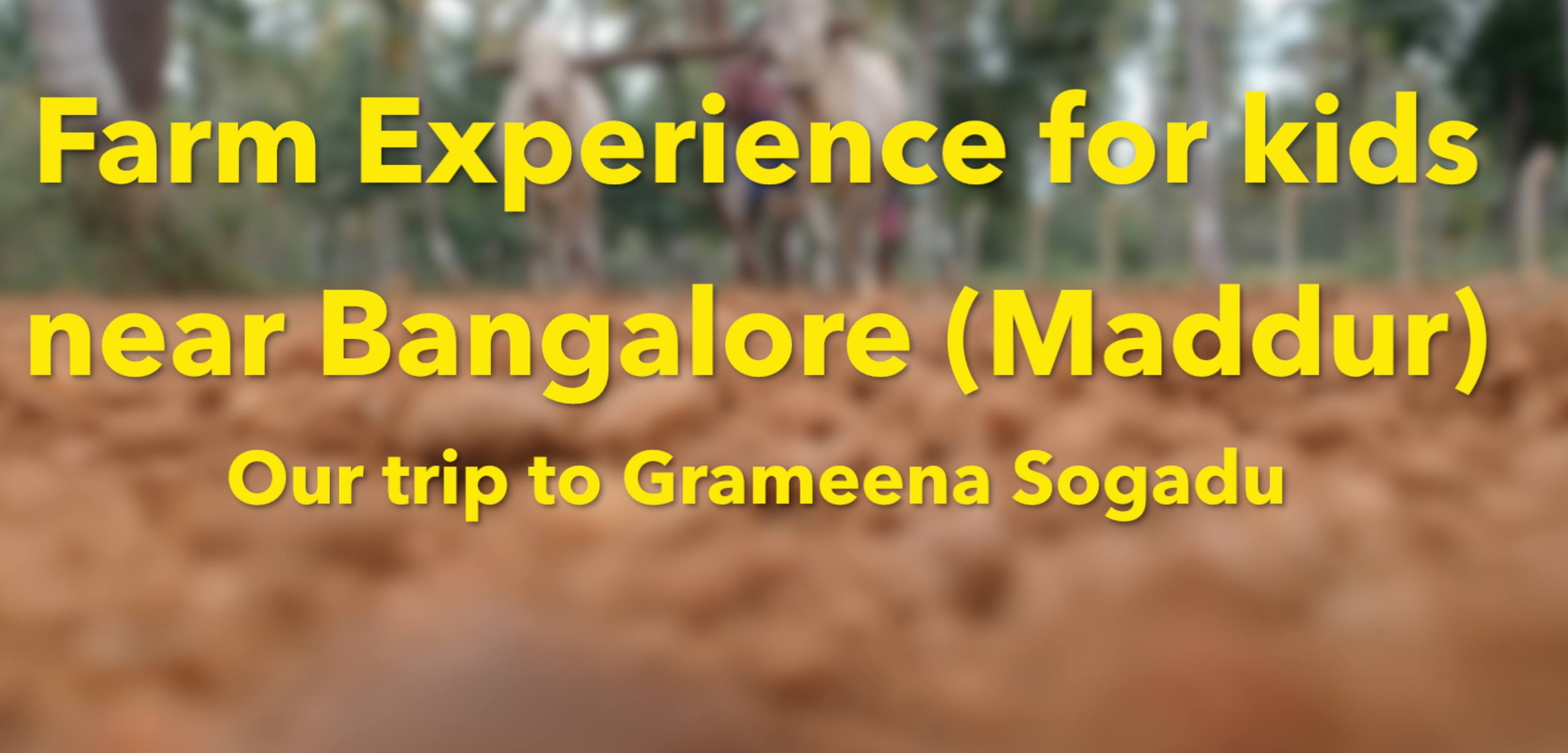 Farming Experience for kids near Bangalore