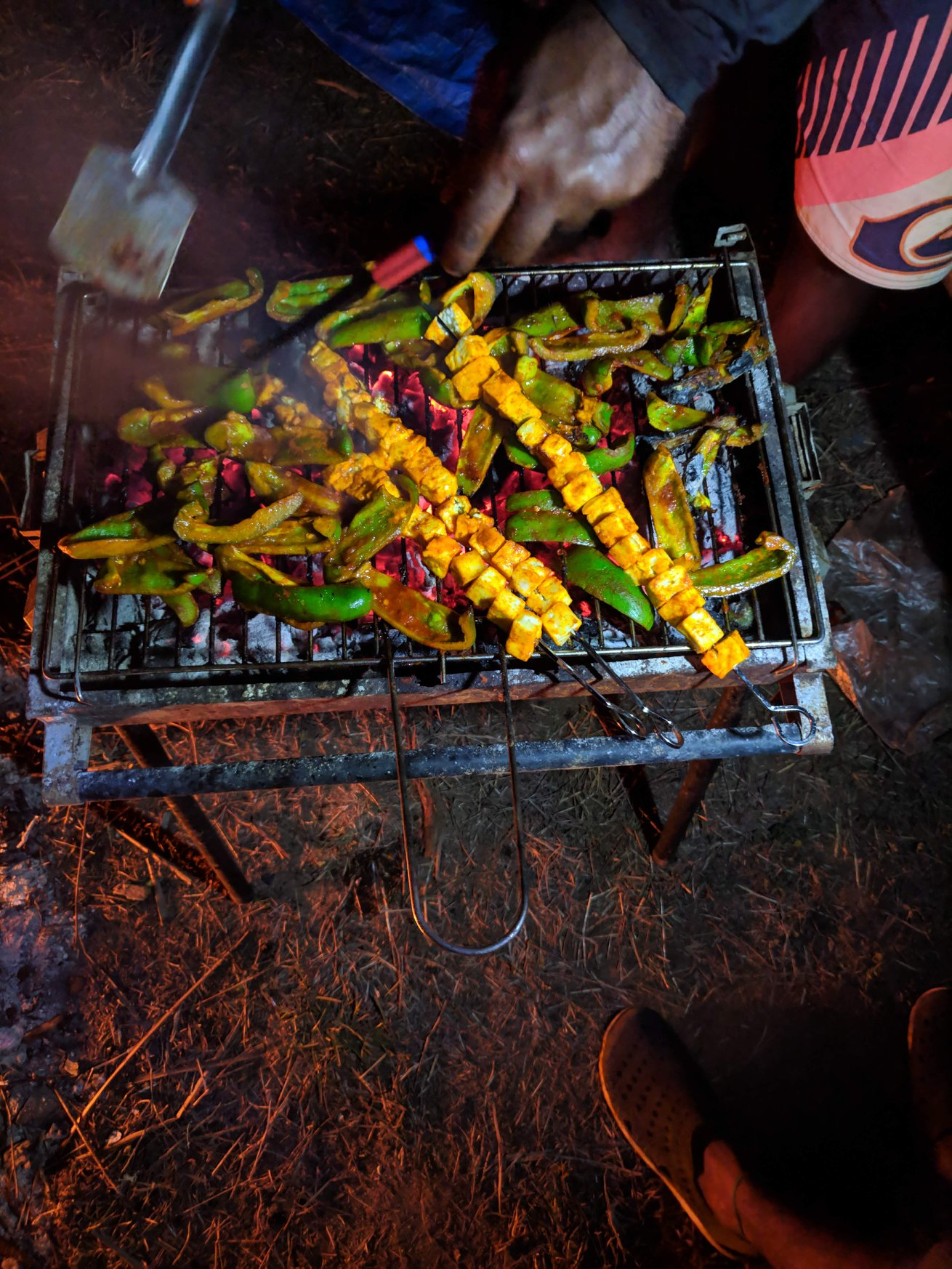 Barbecue Evening : Paneer begins its journey into our stomachs