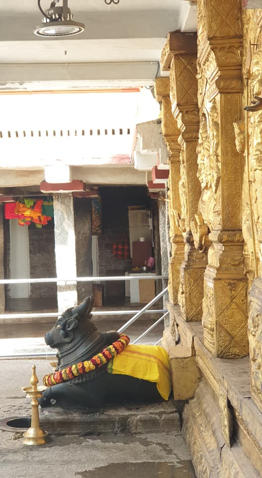 The Nandi Statue, at the Dakshinamukha Nandi Tirtha Kalyani Kshetra temple in Malleswaram